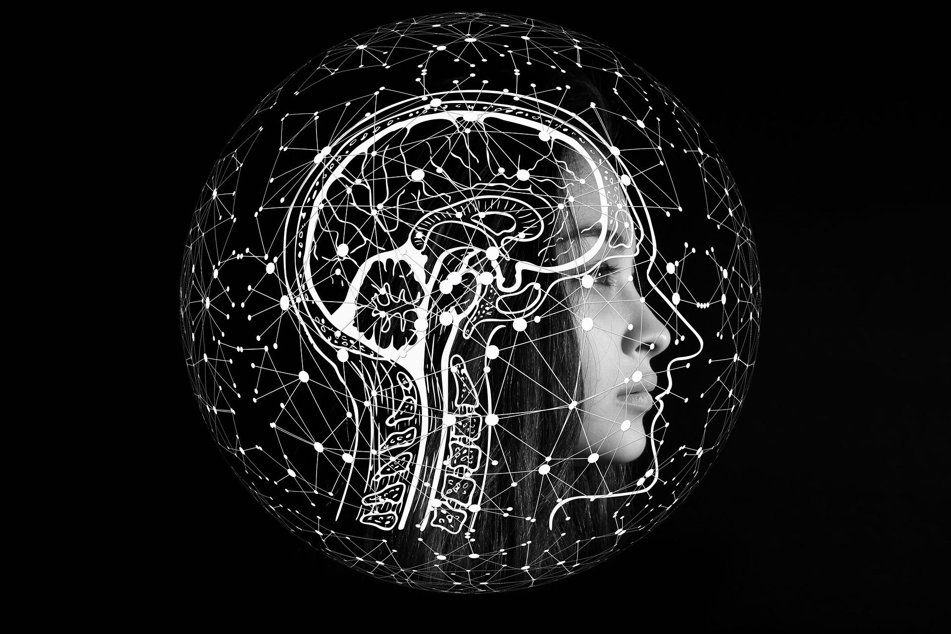 Por que ensinar Ciência de Dados na escola?